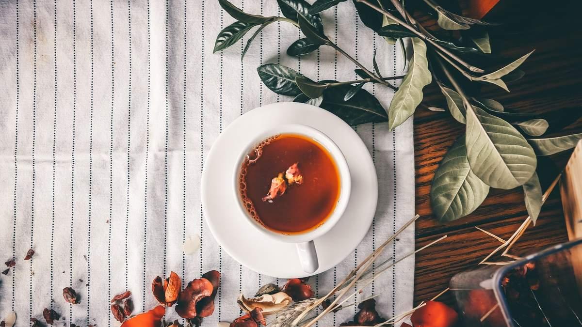 Які чаї допоможуть боротися із запаленням: 5 видів, які ви можете заварити просто зараз - Здорово